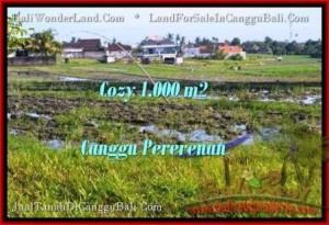 FOR SALE Magnificent PROPERTY LAND IN Canggu Kayutulang TJCG177