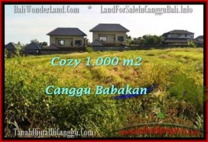 Beautiful PROPERTY LAND FOR SALE IN Canggu Batu Bolong  BALI TJCG178