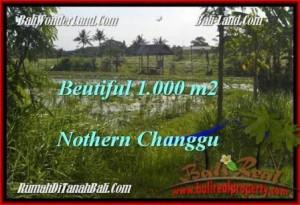 1,000 m2 LAND IN Canggu Batu Bolong  BALI FOR SALE TJCG180