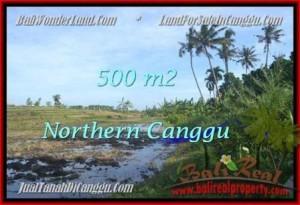 Exotic 500 m2 LAND SALE IN Canggu Pererenan BALI TJCG181