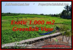 Exotic PROPERTY 1,000 m2 LAND IN CANGGU FOR SALE TJCG184