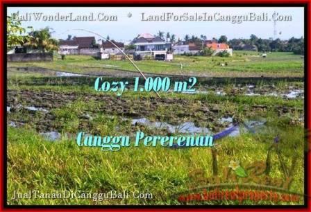 Beautiful PROPERTY 1,000 m2 LAND FOR SALE IN Canggu Kayutulang  TJCG177