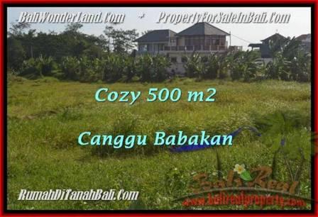Magnificent PROPERTY 500 m2 LAND FOR SALE IN Canggu Batu Bolong  TJCG179