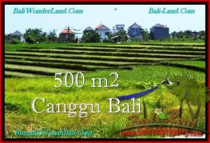 Affordable 500 m2 LAND SALE IN Canggu Brawa BALI TJCG192