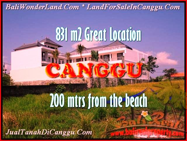 Beautiful PROPERTY 831 m2 LAND IN Canggu Batu Bolong FOR SALE TJCG160