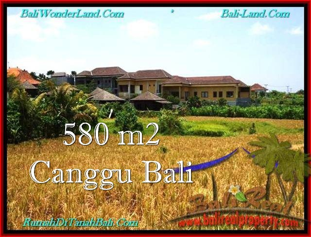 FOR SALE Magnificent PROPERTY 580 m2 LAND IN Canggu Pererenan TJCG197