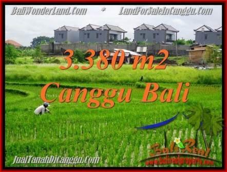 Beautiful 3,380 m2 LAND SALE IN CANGGU TJCG199