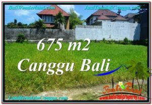 Exotic PROPERTY 675 m2 LAND FOR SALE IN CANGGU BALI TJCG200