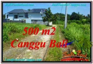 Affordable PROPERTY LAND IN Canggu Brawa BALI FOR SALE TJCG201