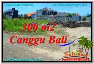 Beautiful 300 m2 LAND SALE IN CANGGU TJCG203