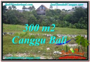 Exotic 300 m2 LAND IN CANGGU FOR SALE TJCG205