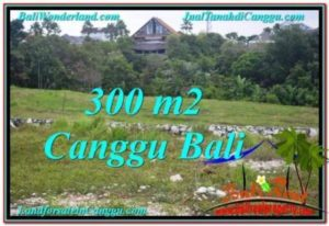 Exotic PROPERTY 300 m2 LAND IN Canggu Umalas FOR SALE TJCG205