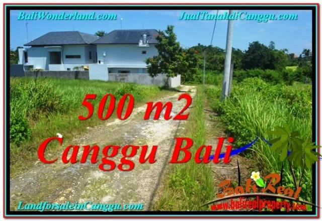 Beautiful PROPERTY Canggu Brawa LAND FOR SALE TJCG201
