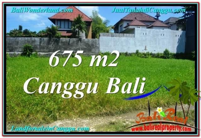 Magnificent 675 m2 LAND IN CANGGU BALI FOR SALE TJCG200