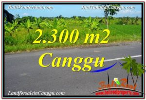 Exotic PROPERTY 2,300 m2 LAND FOR SALE IN CANGGU BALI TJCG209