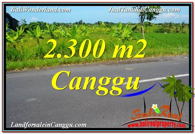 FOR SALE Exotic PROPERTY 2,300 m2 LAND IN Canggu echo beach BALI TJCG209