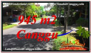 FOR SALE Affordable PROPERTY LAND IN Canggu Pererenan TJCG210