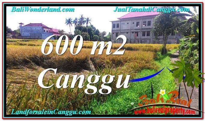 Magnificent 600 m2 LAND SALE IN Canggu Pererenan TJCG211