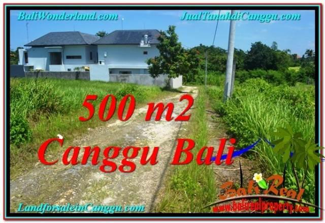 Beautiful PROPERTY 500 m2 LAND FOR SALE IN Canggu Brawa TJCG201