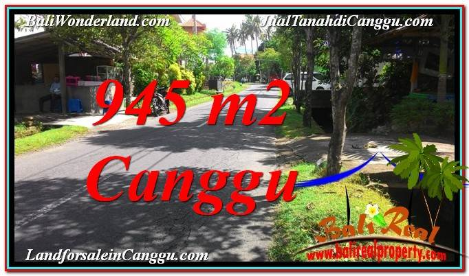 FOR SALE Beautiful 945 m2 LAND IN Canggu Pererenan TJCG210