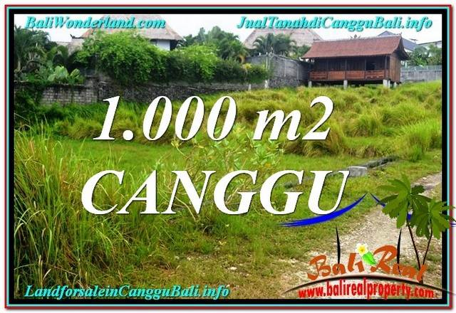 FOR SALE Magnificent 1,000 m2 LAND IN Canggu Pererenan TJCG214