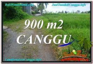 Exotic PROPERTY LAND FOR SALE IN Canggu Batu Bolong BALI TJCG215