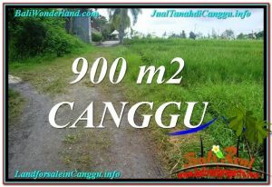 Magnificent 900 m2 LAND FOR SALE IN CANGGU TJCG215