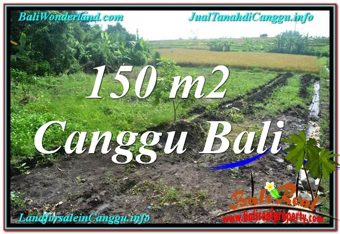 FOR SALE Magnificent 150 m2 LAND IN Canggu Pererenan TJCG213