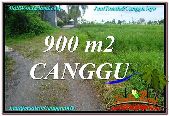 Beautiful 900 m2 LAND FOR SALE IN Canggu Batu Bolong BALI TJCG215