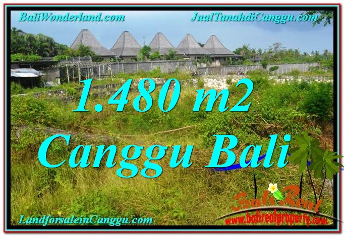 Beautiful PROPERTY Canggu Pererenan BALI 1,480 m2 LAND FOR SALE TJCG212