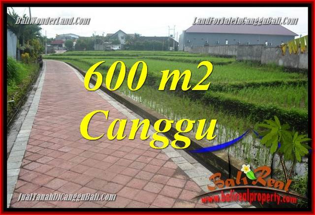 Beautiful PROPERTY 600 m2 LAND SALE IN Canggu Brawa BALI TJCG220