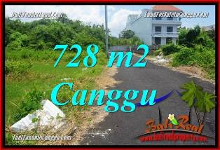 FOR SALE Magnificent 728 m2 LAND IN CANGGU BRAWA BALI TJCG222