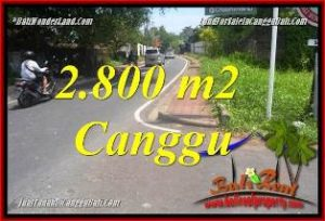 FOR SALE Magnificent PROPERTY 2,800 m2 LAND IN CANGGU BALI TJCG223