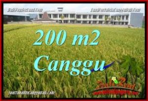 CANGGU BALI 200 m2 LAND FOR SALE TJCG229