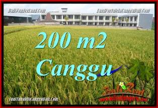 Magnificent PROPERTY 200 m2 LAND FOR SALE IN CANGGU BALI TJCG229