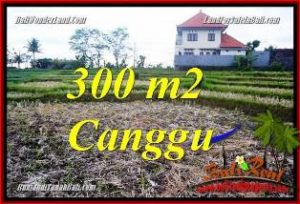 Magnificent PROPERTY LAND FOR SALE IN CANGGU TJCG230