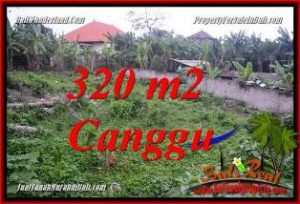 FOR SALE Exotic PROPERTY 320 m2 LAND IN CANGGU PERERENAN TJCG231
