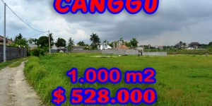 Land in Canggu for sale 1.000 m2 Stunning Rice-fields View
