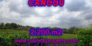 Land for sale in Bali, Attractive view in Canggu Bali – 2.200 sqm @ $ 283