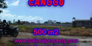 Land in Bali for sale, Eye-catching view in Canggu Bali – 500 sqm @ $ 850