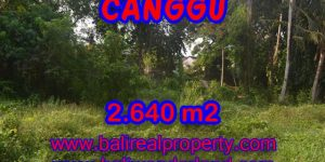 Land for sale in Bali, Fantastic view in Canggu Bali – 2.640 sqm @ $ 328