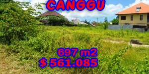 Land for sale in Canggu Bali Indonesia, Astonishing Paddy View in Canggu Berawa - TJCG097