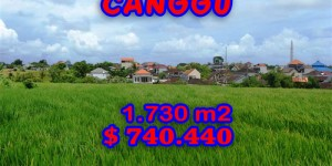 Astonishing Property in Bali, land in Canggu Bali for sale – 1.730 sqm @ $ 428