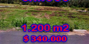 Land for sale in Bali, Beautiful view in Canggu Bali – 1.200 sqm @ $ 283