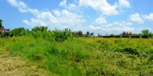 Land in Canggu for sale 6.97 Ares with Close to Berawa Beach