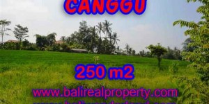Land for sale in Canggu Bali, Magnificent view in Pererenan – TJCG135