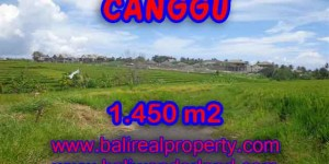 Land in Canggu Bali for sale, nice view in Canggu Cemagi Bali – TJCG137