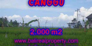 Land for sale in Canggu Bali, Great view in Canggu Cemagi – TJCG140