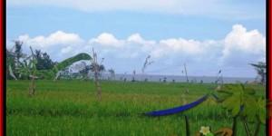 Affordable CANGGU BALI LAND FOR SALE TJCG140