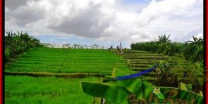 Affordable CANGGU BALI LAND FOR SALE TJCG141